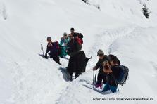 Exclusiv. Românii care au scăpat de tragedia montană Annapurna, Nepal