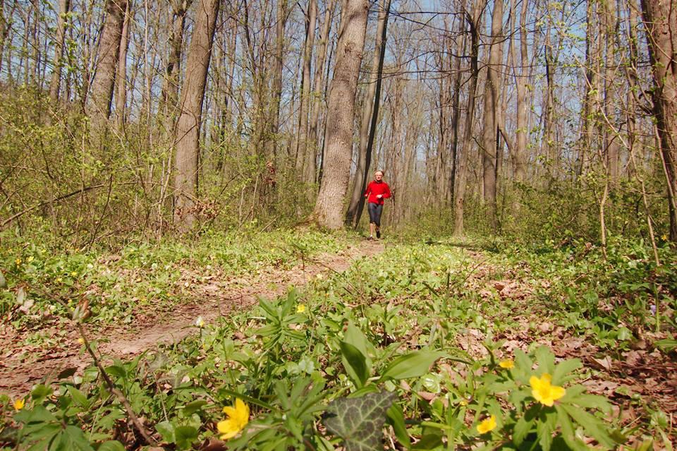 Alergare prin pădure, lângă București, la Cernica Spring Trail Running!