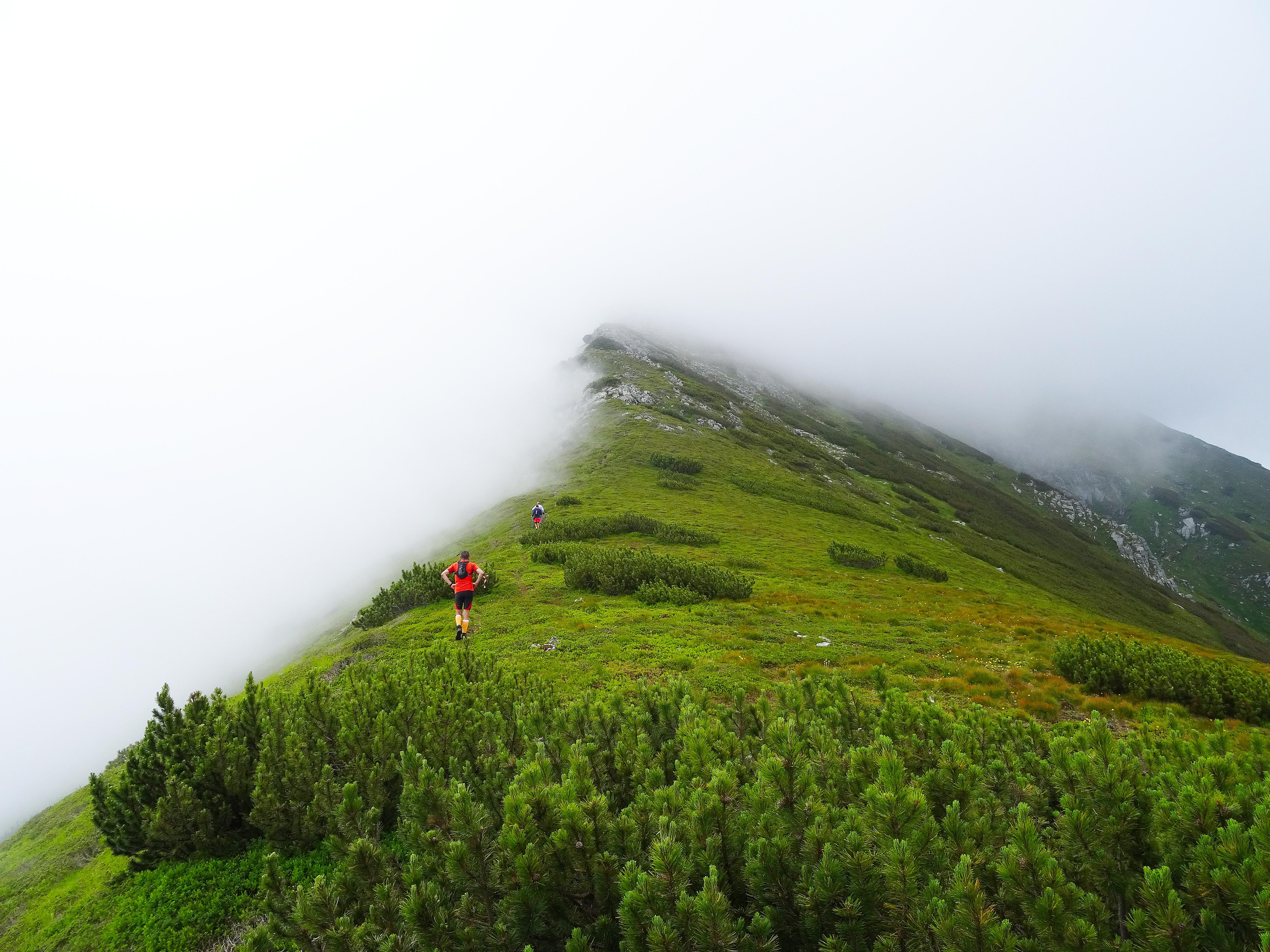 Rodnei Sky Race: trail run în Maramureş!