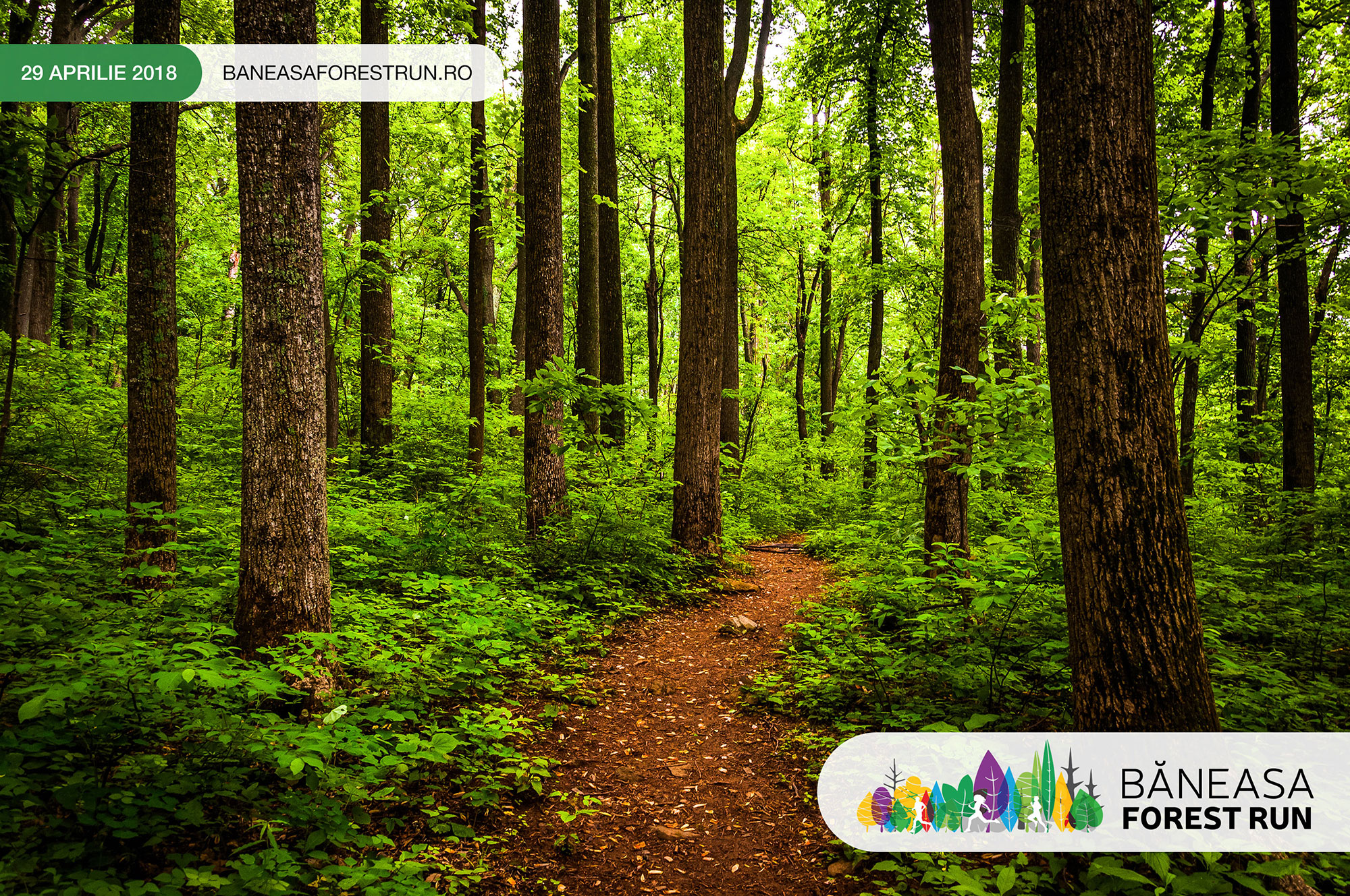 Băneasa Forest Run, pe 29 aprilie!
